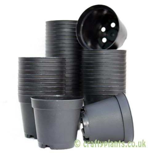 5.5cm plastic plant pots by craftyplants
